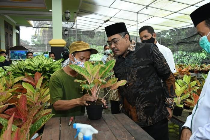 Wakil Ketua MPR RI Jazilul Fawaid menyempatkan diri mengunjungi Krokot Nursery di Desa Tridadi, Sleman dalam kunjungan kerjanya.
