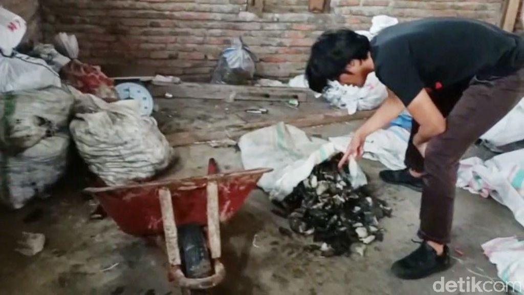 Polisi Gerebek Rumah Warga di Mamuju Tempat Pengolahan Daging Penyu
