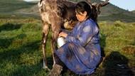 Susu Kecoa dan Susu Rusa, 5 Susu Ini Bukan Berasal dari Sapi