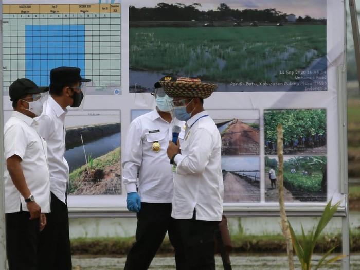 Presiden Jokowi dan Mentan Syahrul Yasin Limpo saat meninjau food estate di Kalimantan Tengah, Kamis (8/10/2020).