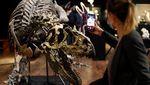 Fantastis! Kerangka Dinosaurus Ini Dilelang Jutaan Euro