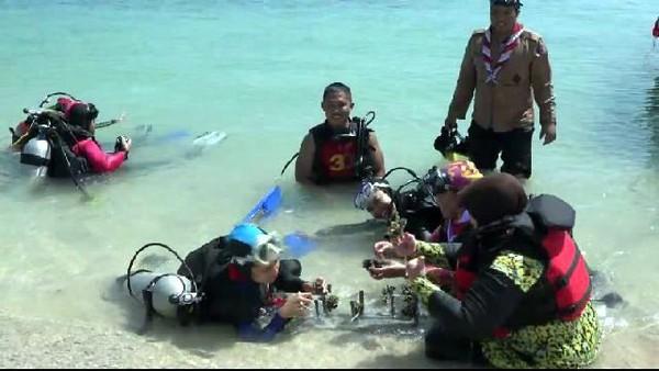 Untuk melestarikan terumbu karang di Pulau Gili Ketapang Probolinggo, setiap wisatawan wajib menanam 1 terumbu karang saat menyelam, kata Hadi Nugroho, operator penyelam, sekaligus Ketua Komunitas Marina Coral Dive. (M Rofiq/detikcom)