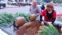 Keren! 5 Penjual Sayuran Ini Jualan Pakai Mobil hingga Motor Sport