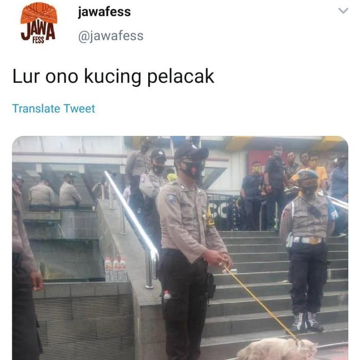 Viral polisi bawa kucing pelacak saat amankan demo di Magelang, Jumat (9/10/2020).