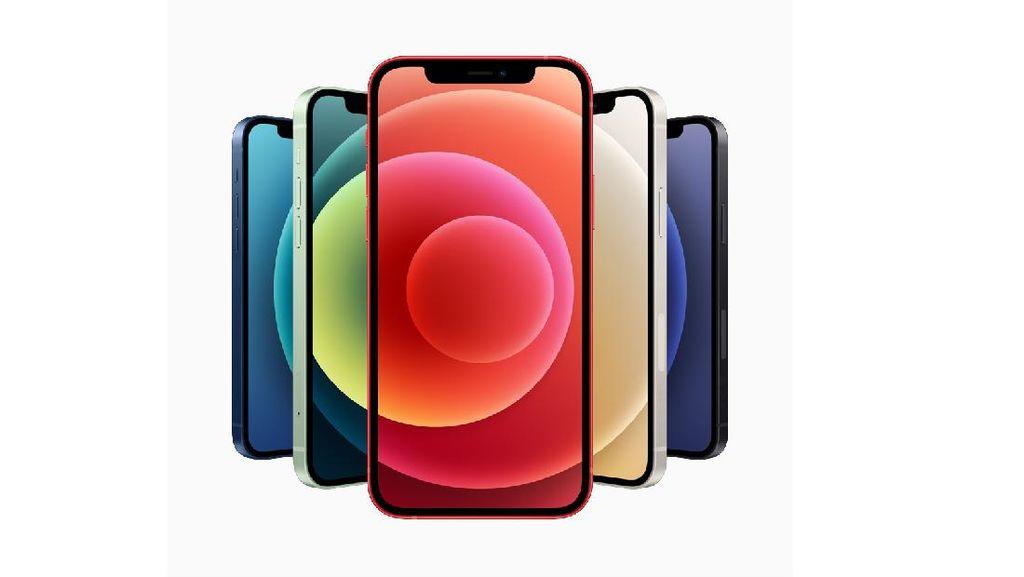 iPhone 12 Lolos TKDN, Siap-siap Dirilis di Indonesia