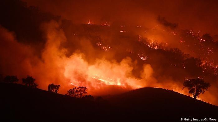 Kebakaran hutan di Australia, Januari 2020