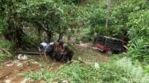 Pikap Muat Babi di Polman Sulbar Masuk Jurang, Pengemudi Tewas