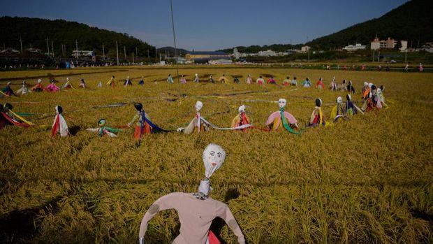 Bangau raksasa dan instalasi seni lain di sawan Suncheon, Korsel