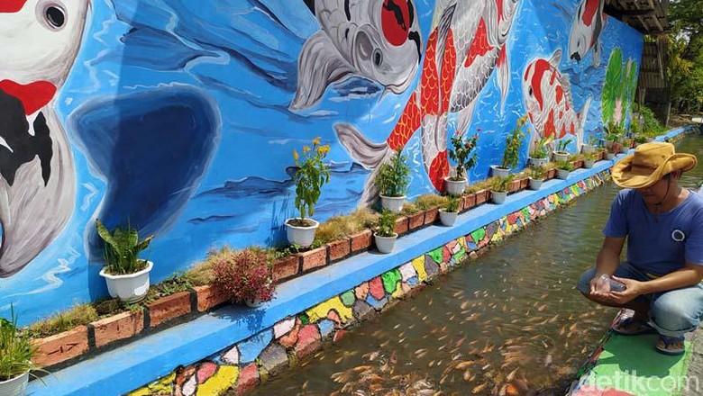 Tak jauh dari Candi Mendut, ada wisata budidaya ikan tawar di Desa Ngrajek, Kabupaten Magelang, Jawa Tengah. Pengunjung pun dapat belajar budidaya ikan di sini.