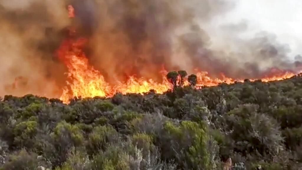 Kilimanjaro, Gunung Tertinggi di Afrika Terbakar