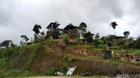 Saung-saung didirikan di atas bukit, sehingga pengunjung langsung disuguhi panorama alam Pangandaran dari ketinggian.