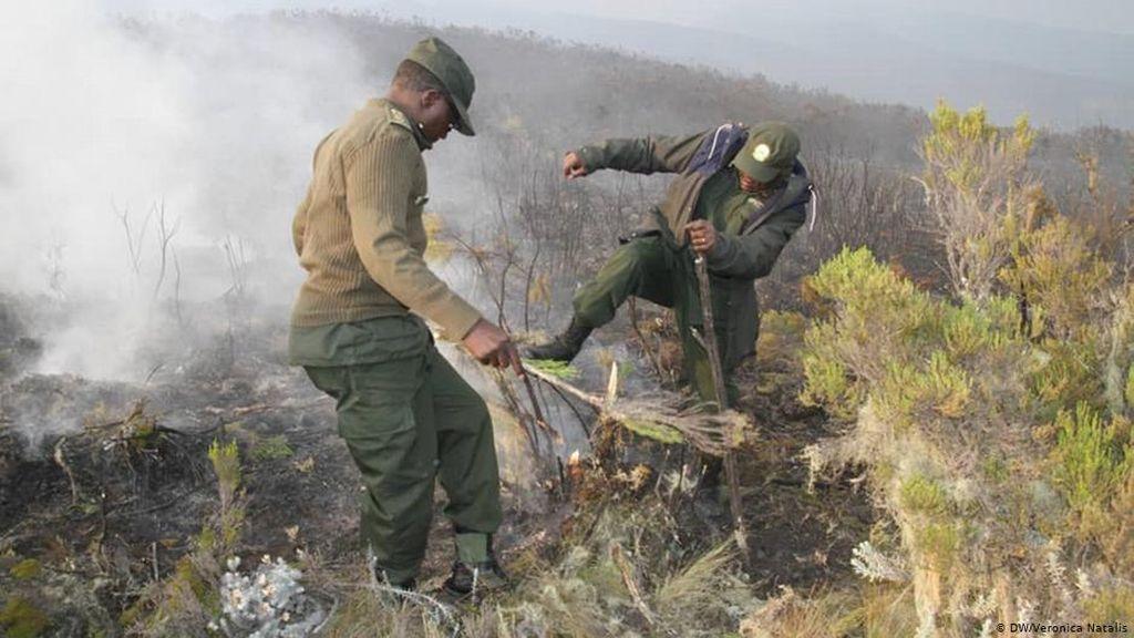 Gunung Kilimanjaro Dilanda Kebakaran, Pendaki Asing Dievakuasi