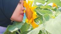 Lengkap dengan taman bunga matahari yang kian mempercantik untuk swafoto(mahonibangunsentosa/Instagram)