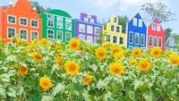 Traveler akan menemukan bangunan-bangunan ala Belanda dan juga taman matahari yang cantik. (mahonibangunsentosa/Instagram)