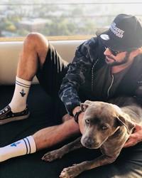Beberapa bulan lalu Zac Efron menyelamatkan seekor pitbull dari perdagangan hewan. Diapun jatuh hati, mengadopsinya dan memberi nama anjing ini Maca. (Bored Panda)