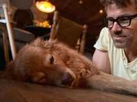 Nih potret manja Baxter, anjing adopsinya Ryan Reynold.