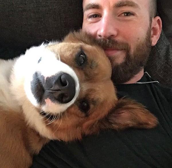 Potret Chris Evan dengan anjing adopsinya yang bernama Dodger. Konon mereka bertemu di salah satu proyek film yang sedang dilakukan Christ.