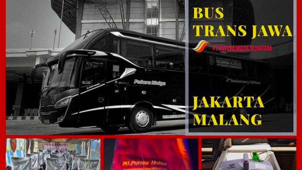 Naik Bus Mewah Trans Jawa Rute Malang-Jakarta, Segini Tarifnya