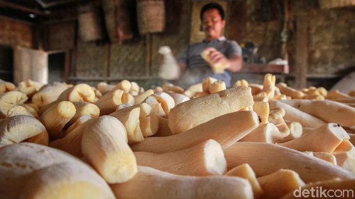 Salah satu pusat pembuatan tape singkong (peyeum) berada di Kampung Poncol, Gunung Sindur, Kabupaten Bogor. Pabrik ini telah beroperasi sejak tahun 1970-an.