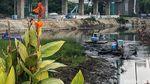 Pengerukan Pulau di Danau Setiabudi Barat