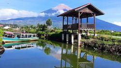 Menjajal Rawa Tertinggi di Indonesia