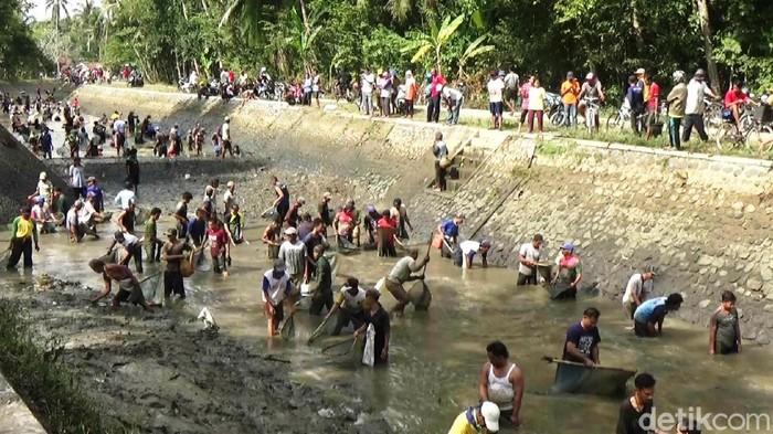 Tradisi bersih-bersih sungai di Purworejo, 18/10/2020