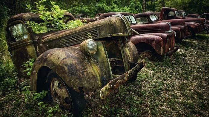 Tak sedikit orang yang rela merogoh kocek lebih dalam demi memiliki mobil antik. Namun, mobil-mobil lawas ini justru ditelentarkan begitu saja. Berikut fotonya.