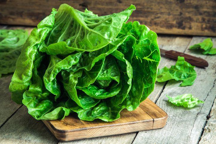Tips Bikin Salad