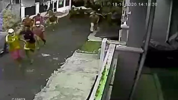 Video CCTV Puluhan Orang Berlarian Digerebek Polisi Saat Sabung Ayam