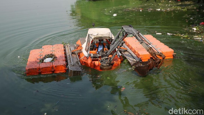 Petugas Unit Pelaksana Kebersihan Badan Air Dinas Lingkungan Hidup DKI Jakarta membersihkan sampah Situ Rawa Badung di Cakung, Jakarta Timur, Jumat (7/2/2020). Keberadaan situ yang bebas dari sampah di sekitar areal perumahan berguna untuk daerah resapan air dari banjir. Dari sekitar 109 waduk dan embung di DKI, normalisasi baru selesai di 16 waduk.