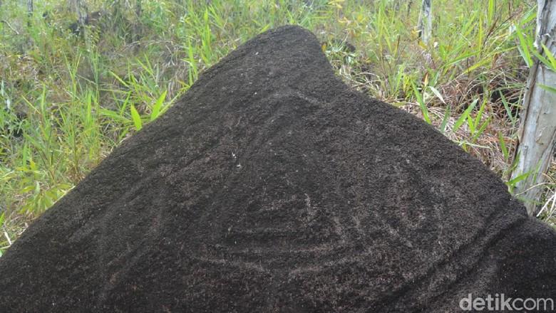 Situs Megalitikum Bukit Tutari Papua