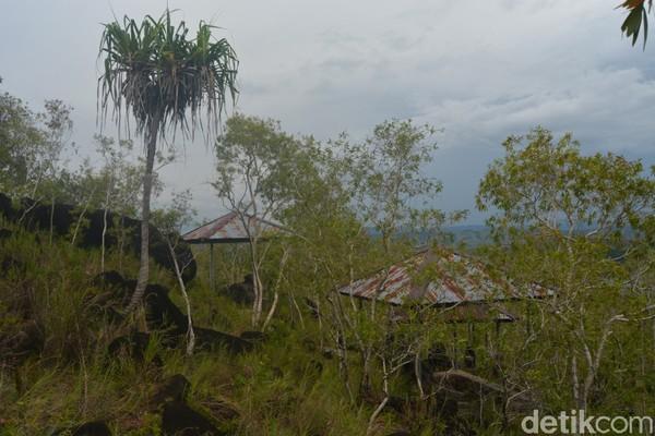 Batu-batu megaliltikum ini dikelilingi oleh pohon kayu manis. (Hari Suroto/Istimewa)