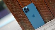 iPhone 12 Pro Pacific Blue Tampil Mewah Harga Rp 15 Juta