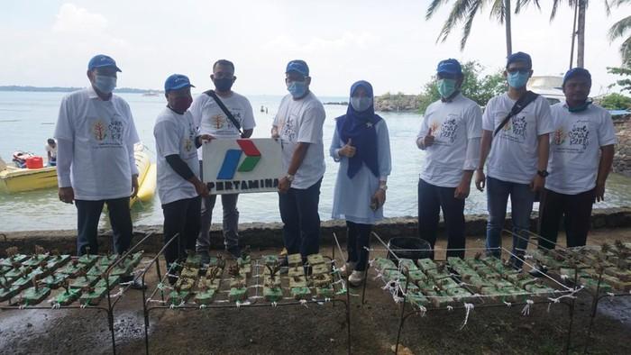 Kelompok Konservasi Alam Bawah Laut Sukarame bergerak bersama PT Pertamina (Persero) melakukan transplantasi terumbu karang di Pantai Katapang.