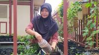 Dengan biaya dan pengerrjaan secara swadaya, warga kampung berbenah. Mereka bersih-bersih dan menanam tanaman hijau, juga membuat kolam ikan.