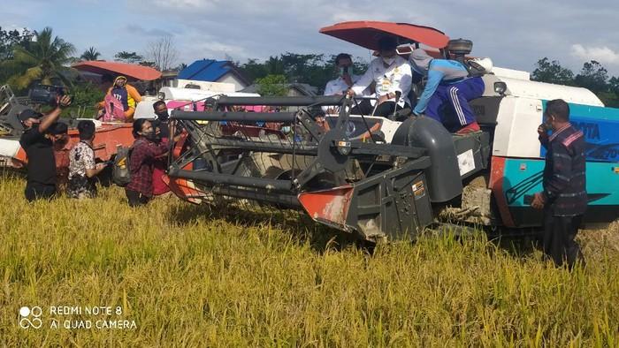 Mentan Panen Raya Seluas 178.5 Ha di Konawe Selatan