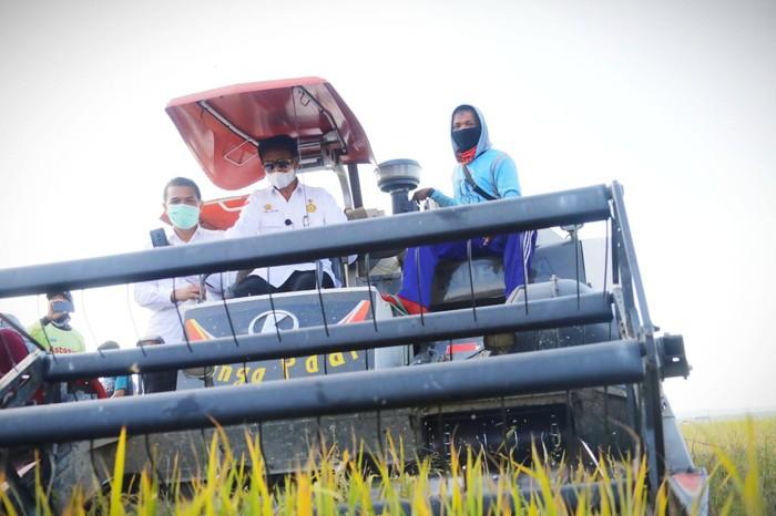 Menteri Pertanian Syahrul Yasin Limpo melakukan panen raya padi di Desa Cialam Jaya, Kecamatan Konda, Konawe Selatan.