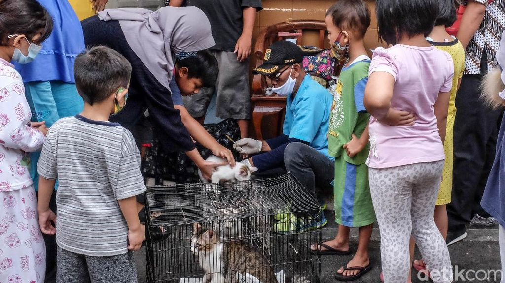 Dinas KKP Jakarta Gerilya Vaksin Rabies Gratis