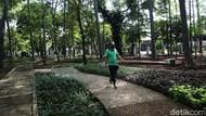 Taman Tebet Bakal Digenangi Air saat Musim Hujan, Kenapa?