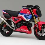 Imut-imut Tapi Racing, Honda Grom Berbaju HRC
