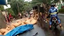 Niat Nyalip, Bus di Bojonegoro Malah Tabrak Truk hingga Terguling