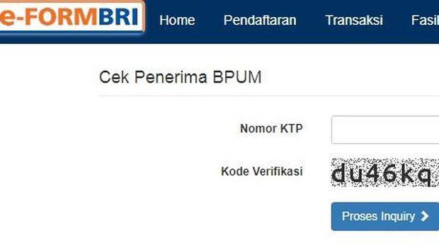 Tangkapan layar e-form BRI