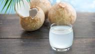 Manfaat Air Kelapa untuk Cegah Dehidrasi Selama Puasa