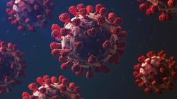 Apa Penyebab Adanya Virus Corona? Ini Jawabannya untuk Diingat Lagi