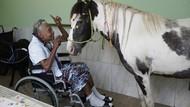 Kuda hingga Kambing Jadi Teman Para Lansia di Brasil Saat Pandemi