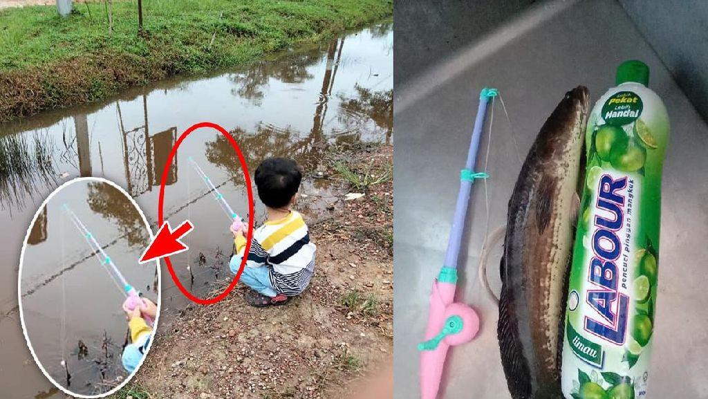 Pakai Pancingan Mainan, Bocah Ini Berhasil Tangkap Ikan Besar