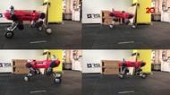 ANYmal, Robot Mirip Hewan yang Bergerak Super Lincah