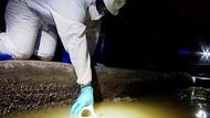 Ilmuwan Inggris Teliti Jejak Corona di Saluran Limbah untuk Deteksi Wabah
