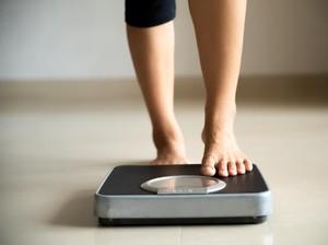 Ini Makanan Sehat untuk Diet Penurunan Berat Badan