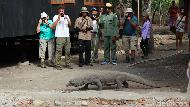 Komodo Vs Truk, Ini Zona Pembangunan di Taman Nasional Komodo